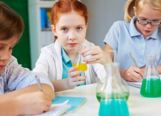 Curiosidades sobre os equipamentos mais utilizados em laboratórios escolares e acadêmicos